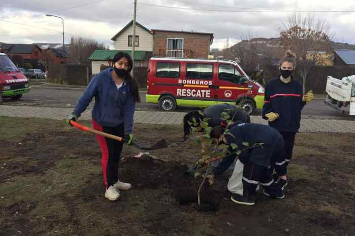 """Junín de los Andes: Plantaron plantas en la """"Plaza Bomberos Voluntarios"""""""