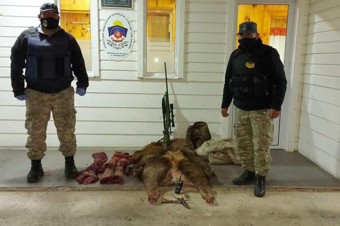 Furtivos: Atrapan a dos furtivos, secuestran carne de Ciervo Colorado, un arma larga, un vehículo y elementos de caza