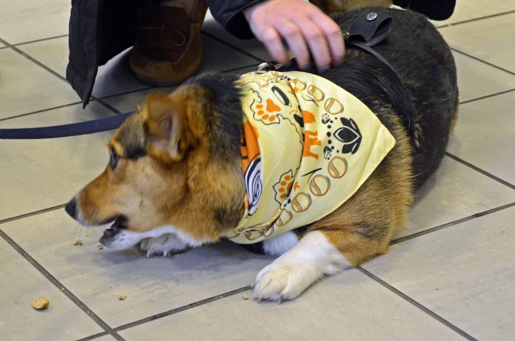 "David Paul Kirkpatrick's ""the dog"" book signing event at Barnes"