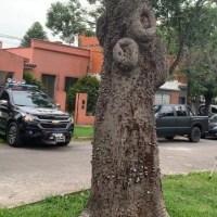Drogas: detuvieron a un alto mando de la Jefatura de San Lorenzo