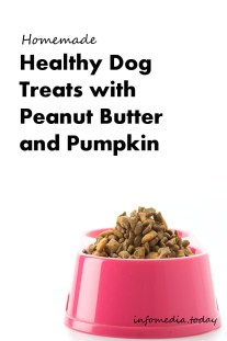 Homemade Healthy Dog Treats With Peanut Butter and Pumpkin