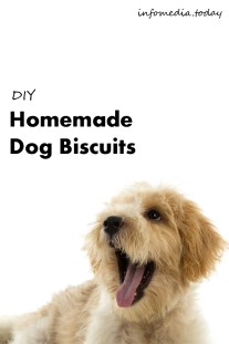 DIY Homemade Dog Biscuits - Recipe