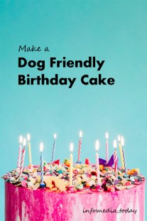 Make a Dog Friendly Birthday Cake-Recepie