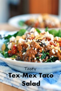 Tasty Tex-Mex Taco Salad