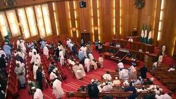 senate_national_assembly_nigeria
