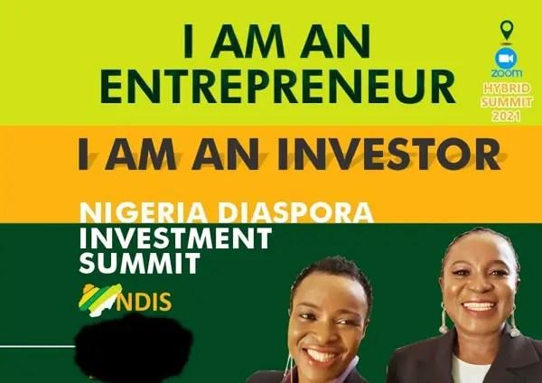 benefits-nigeria-diaspora-investment-summit-ndis
