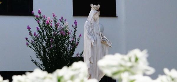 Séptimo día de la Novena por la Natividad de la Santísima Virgen María