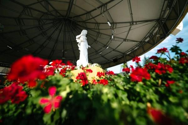 Mensaje de la Virgen María Reina de la Paz del 25 de octubre de 2020 Medjugorje; Bosnia Herzegovina
