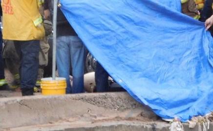 Una mujer muerta, varios desaparecidos, vehículos arrastrados y personas rescatadas, deja torrencial lluvia en Nogales