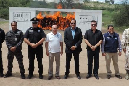 Incineran casi cuatro toneladas de drogas en Nogales
