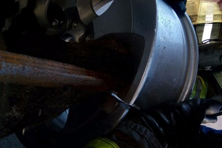 Salvan bomberos de Nogales la vida de un perrito (¡VEA EL VIDEO DEL RESCATE!)