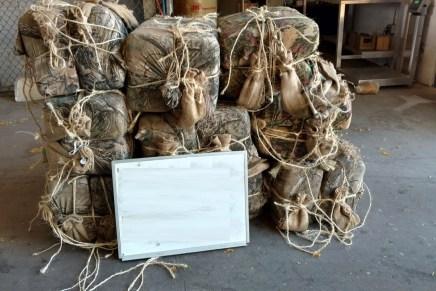 """Caen dos """"burreros"""" hondureños con 670 libras de marihuana, cerca de Nogales"""