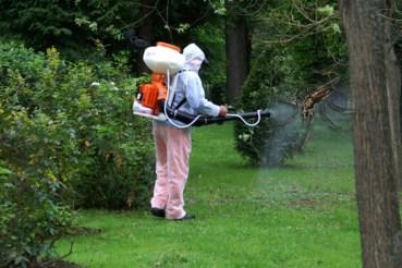 ATENTIE! In perioada 27.07-03.08, in Oradea, se vor desfasura lucrari de dezinsectie, deratizare si tratamente fitosanitare, in parcuri, spatii vezi si maluri de ape