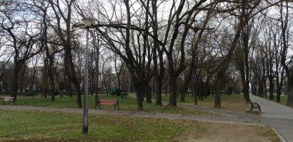 Un nou acord cadru de trei ani pentru întreținerea spațiilor verzi din Municipiul Oradea