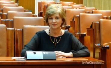 Florica Cherecheș solicită modificarea Legii învățământului profesional dual. Ce amendamente propune deputatul