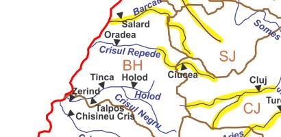 COD GALBEN de inundatii in judetul Bihor. Torenti, viituri si inundatii locale pe Crisul Repede si Barcau
