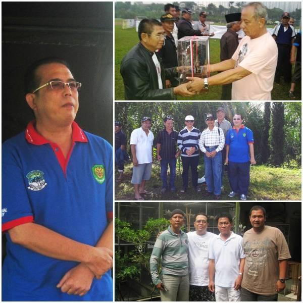 Juara 1 kelas piyik hanging dan juara 1 piyik yunior Siliwangi Cup Bandung 23 Maret 2013