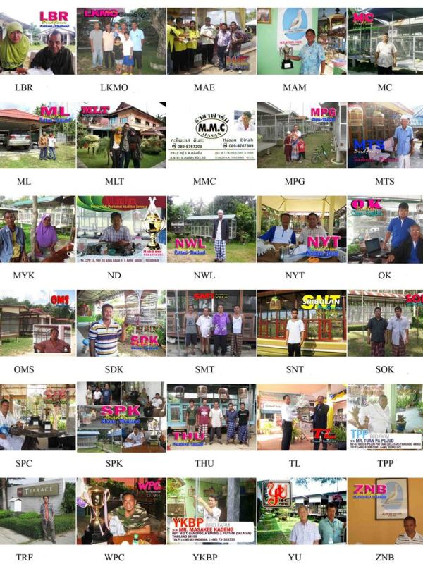 30 kedua dari 60 bird farm Thailand