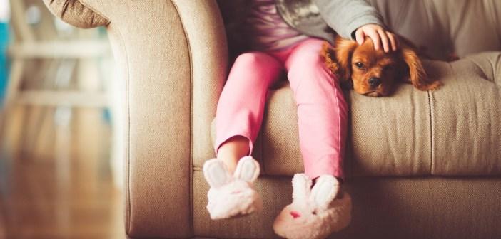 Dítě a správně socializované štěně si dobře rozumí