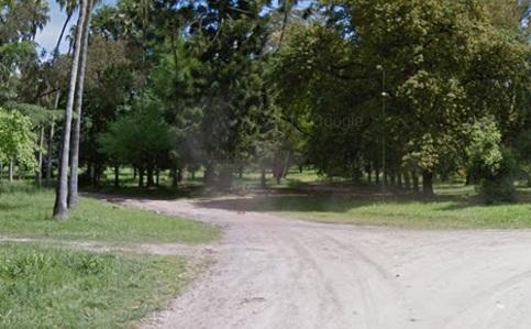 Parque pereira