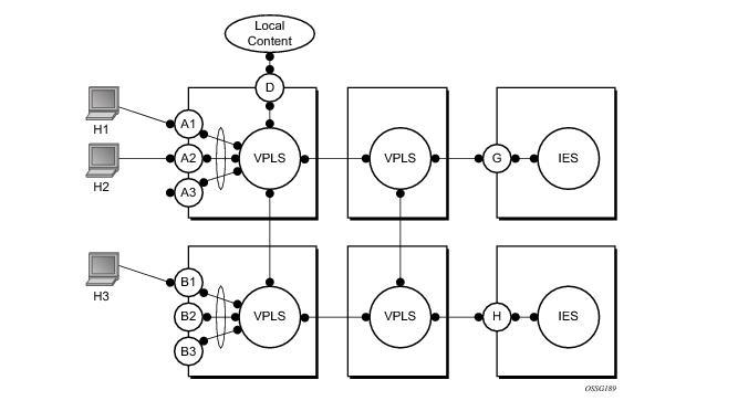 Virtual Private LAN Service
