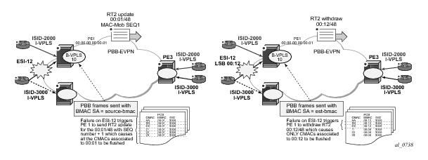 Ethernet Virtual Private Networks (EVPNs)