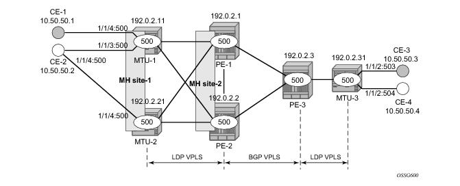 BGP Multi-Homing for VPLS Networks