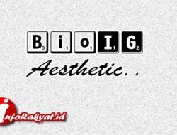 1000+ Bio IG Aesthetic Simple Bahasa Inggris dan Artinya