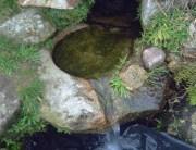 Fuente del Crespo, Valverde Fresno