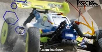 Segunda prueba del Campeonato de Andalucia 1/8 tt eléctrico