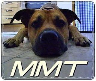 MMT - Parte II