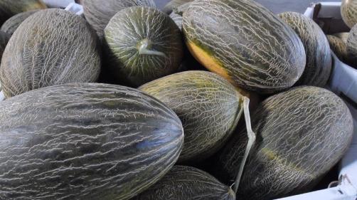 Melones.JPG