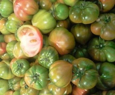 tomates raf reducida