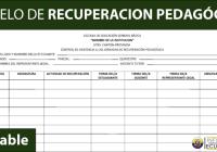 informacionecuador-com-modelo-de-recuperacion-pedagogica-plan-esquema-ficha