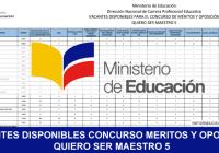 vacantes-disponibles-quiero-ser-maestro-5-2017-concurso-de-meritos-y-oposicion-informacionecuador.com