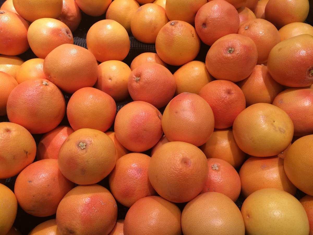 naranjas de Sudáfrica