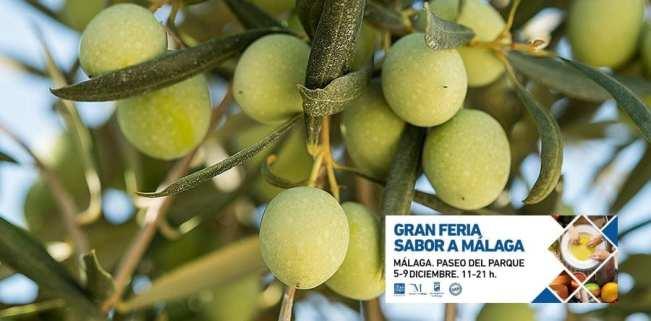 gran feria sabor a málaga aceitunas