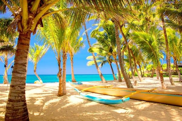 Imgenes con paisajes de Verano sol palmeras y playa