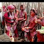 Celebrate culture – Nujoma