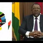 Intra African trade will bolster regional economy