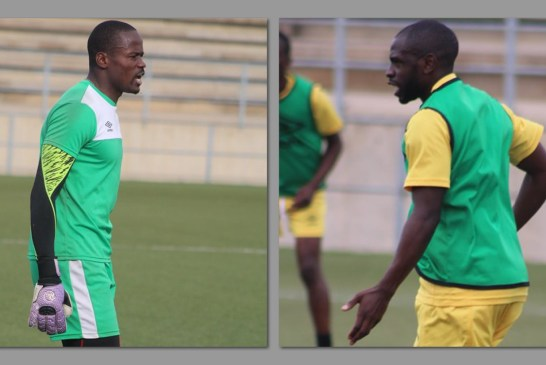 Gome and Maova join Warriors for Madagascar clash