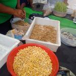 Empower women in farming