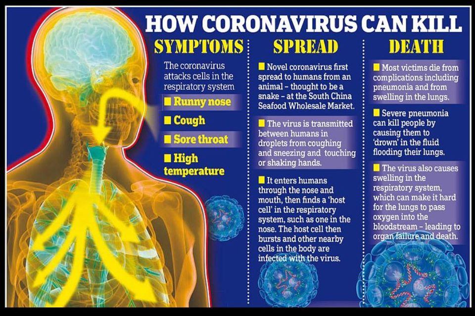 Botswana Coronavirus emergency South Africa