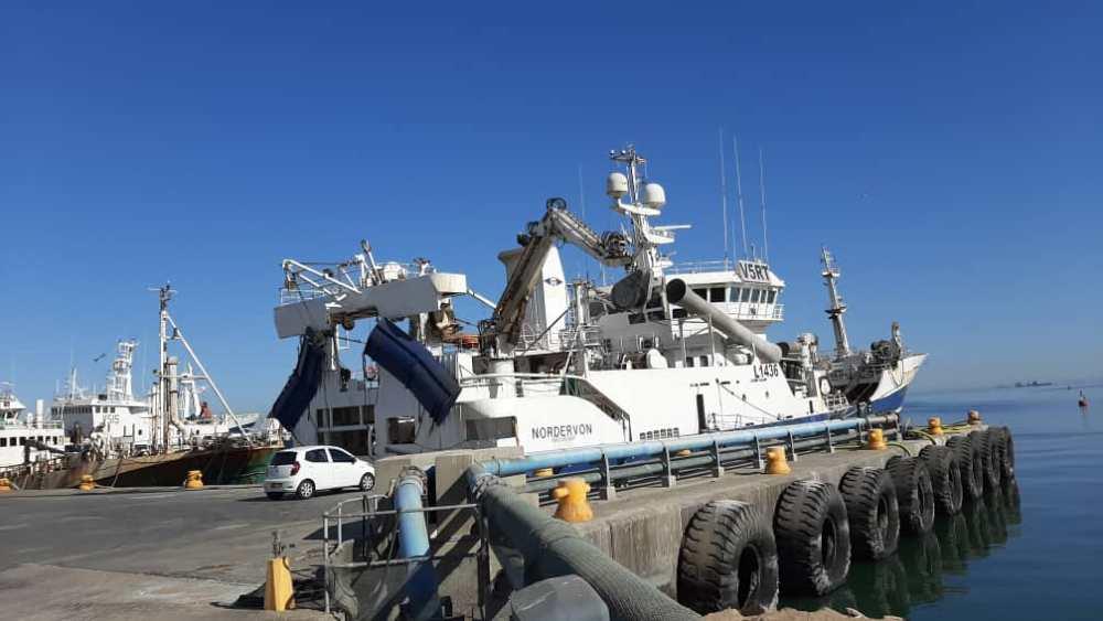 Pelagic Processing doors open granted additional horse mackerel