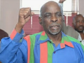 Nahas Angula apology Swapo activist ruling Swapo Party elected leadership congress