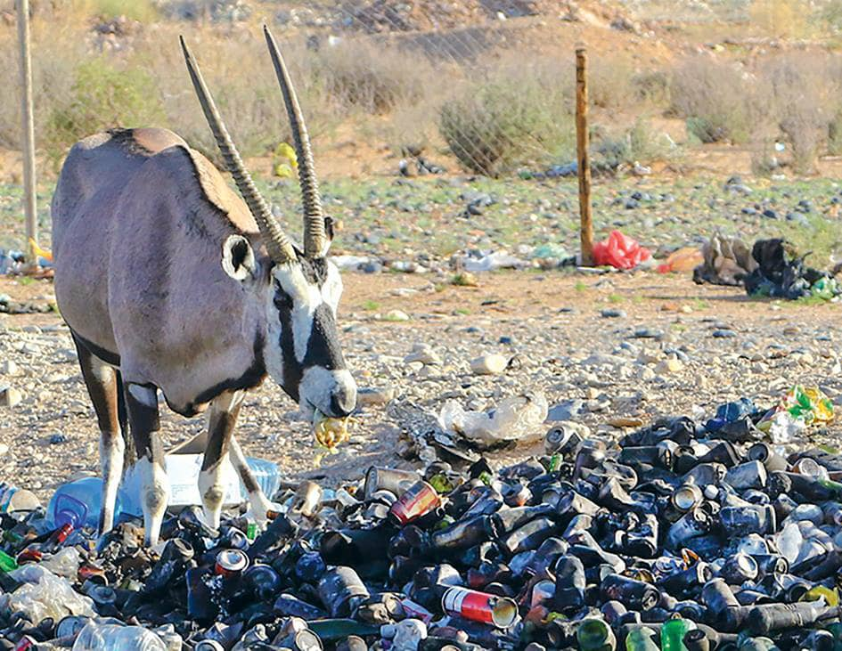 MET NWR rubbish Ministry Environment Forestry Tourism MEFT Namibia Wildlife Resorts NWR