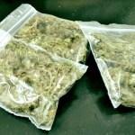 Two suspected drug dealers arrested
