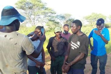 Cattle theft decimating Kunene farmers