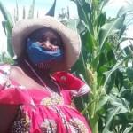 Elderly woman transforms bushy area into beautiful garden