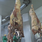 High operation costs closing abattoirs